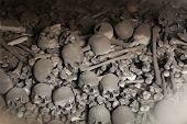 stock photo of skull bones  - Human bones and skulls in the Sedlec Ossuary near Kutna Hora - JPG
