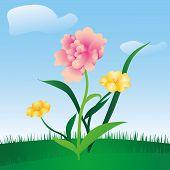 spring floral meadow