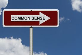 picture of senses  - The way to Common Sense Red and white street sign with word Common Sense with sky background - JPG