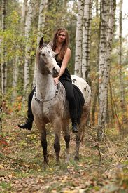 image of appaloosa  - Young girl with appaloosa horse in autumn forest