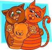 cats family