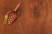 picture of pine cone  - This is a many pine cone like a nature picture - JPG
