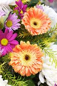 stock photo of gerbera daisy  - Gerbera and Daisy a bouquet of flowers - JPG