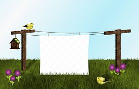 picture of clotheslines  - A white quilt on clothesline - JPG