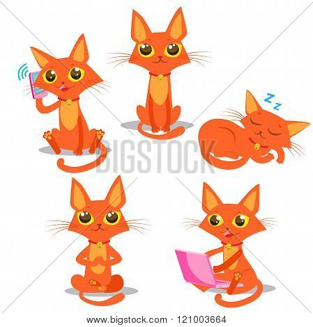 poster of Cute Cat Set. Cat Cartoon Vector. Sitting Cat. Sleeping Cat. Cat And Phone. Cat And Computer. Vector Cat. Red Cat Tail. Cat Pictures. Funny Cat Mascot.