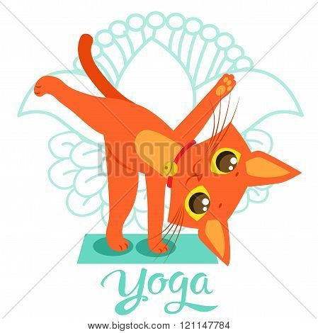 poster of Cartoon Funny Cat Icons Doing Yoga Position. Yoga Cat Pose. Yoga Cat Vector. Yoga Cat Meme. Yoga Cat Images. Yoga Cat Figurine. Cat As Toy. Yoga Cat Statue. Yoga Cat Balance. Meditation.