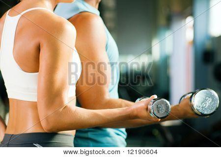 Постер, плакат: мужчина и женщина только оружие и тело тренировки с гантелями фокус на вес глубине Фьель, холст на подрамнике