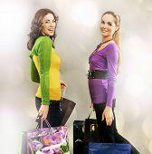 Duas meninas na viagem de compras