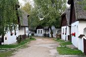Hungarian Street