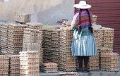 Bolivian Egg Seller