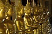 Buddhism statues