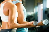 man and a woman (only arms and body) training with dumbbells (focus on weight, shallow depth of fiel