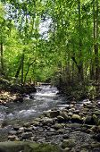 pic of gatlinburg  - A sight to see in the Smokey Mountains in Gatlinburg TN - JPG