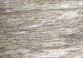 Rough Wood Grain Natural Texture Background.