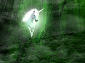 stock photo of unicorn  - A picture of unicorn appearing from the forest