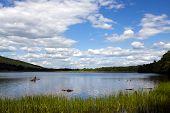 Parque de estado do Lago de alfarroba