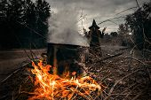 A portrait of an angry witch near the fire cooking spell. Magic, dark force, spell.  poster