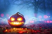 Halloween Pumpkins Glowing In Fantasy Night Forest . Jack OLantern Holiday Horror Background poster