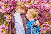 Children Enjoy Warm Spring. Boys Posing Near Sakura. Kids Spring Pink Flowers Of Sakura Tree Backgro poster