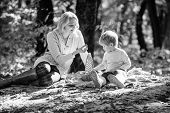 Family Picnic. Mother Pretty Woman And Little Son Sit On Plaid Relaxing Forest Picnic. Good Day For  poster