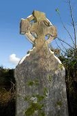 pic of irish moss  - celtic headstone in a graveyard at St - JPG