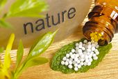 foto of placebo  - alternative medicine with homeopathy and natural globules on leaf - JPG