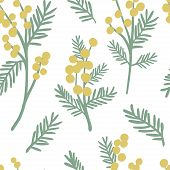 Mimosa Seamless Pattern. Floral Simple Spring Or Summer Graphic Design For Paper, Textile Print, Pag poster