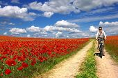 woman on a bicycle on a background of the poppies plantation