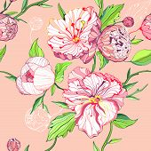 Vector Seamless Colored Background With Peony Flowers