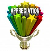 An employee, customer or partner is awarded with this golden trophy with stars and the word Apprecia