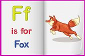 Illustration of a fox in a book on a white background