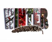stock photo of wane  - The word winter with seasonal photos contained in the letters - JPG
