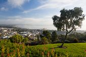 Panorama Of Ventura From Grant Park