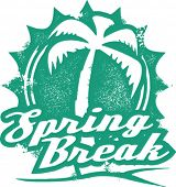 Vintage Style Spring Break Vacation Stamp