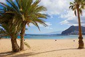 beach las Teresitas, Tenerife