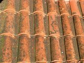 a red tile roof of a house