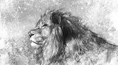 Lion Tattoo Illustration Kunst, handgefertigte Zeichnung