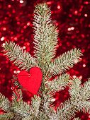 heart on christmas fir tree branch and red background