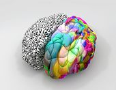 image of right brain  - A typical brain with the left side depicting an analytical structured and logical mind and the right side depicting a scattered creative and colorful side on an isolated background - JPG
