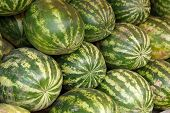 Ripe watermelons