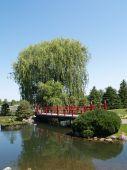 Japanese Garden And Bridge