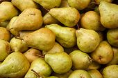 stock photo of horticulture  - HQ photo of ripe pears at market - JPG