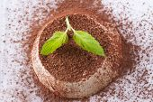 picture of panna  - Sweet italian dessert Panna cotta with a cocoa powder and mint on the top on a white plate.