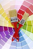 color guide sampler and paintbrush