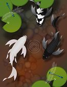 pic of butterfly fish  - Stylized black and white butterfly koi fish swimming in pond with lily pads and dragonflies - JPG