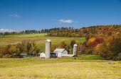 Upstate Ny Farm