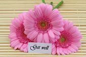 Get well card with pink gerbera daisies