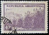 Argentina - Circa 1936: A Stamp Printed In Argentina Shows Sugarcane Field, Circa 1936
