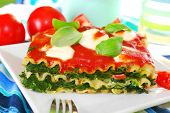 Lasagne With Spinach And Mozzarella