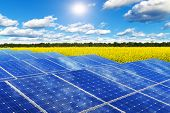 stock photo of rape-field  - Creative solar power generation technology - JPG